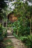 Дома на ходулях в дождевом лесе святилища Khao Sok, Thail Стоковые Фото
