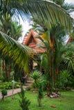 Дома на ходулях в дождевом лесе святилища Khao Sok, Thail Стоковое фото RF