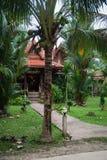Дома на ходулях в дождевом лесе святилища Khao Sok, Thail Стоковые Изображения