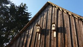 2 дома птицы на старой стене амбара на сельской местности Стоковое Фото