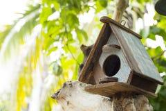 Дома птицы Стоковая Фотография