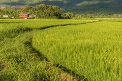 Дома сельской местности вокруг озера Inle, Мьянмы Стоковое Изображение RF