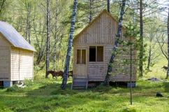 Дома для туристов от дерева в древесине в лете Стоковые Изображения RF