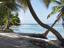 Доминиканская Республика острова i Saona Стоковая Фотография RF