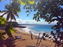 Доминиканская сцена пляжа стоковое фото