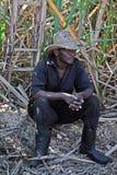 Доминиканский фермер стоковые фотографии rf