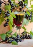 Домодельная настойка сделанная от черных смородин и свежих ягод стоковое изображение