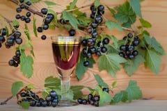Домодельная настойка сделанная от черных смородин и свежих ягод стоковое фото