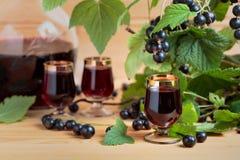 Домодельная настойка черной смородины и свежие ягоды стоковое фото rf