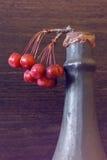 Домодельное вино яблока Стоковые Фотографии RF