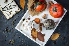 Домодельное какао с зефирами, специями и тыквой, уютным натюрмортом осени, концепцией настроения осени, сезонным оформлением реме Стоковая Фотография
