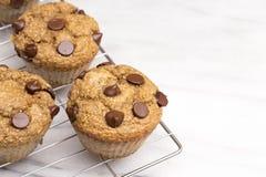 Домодельные булочки обломока шоколада Стоковые Фото