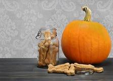 Домодельные косточки печенья собаки тыквы в консервируя опарнике рядом с pum Стоковое Фото