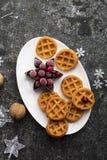 Домодельные мягкие waffles для завтрака с замороженными ягодами органических северных клюкв на белом овальном керамическом блюде  Стоковое Фото