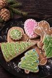 Домодельные печенья имбиря Стоковые Изображения RF