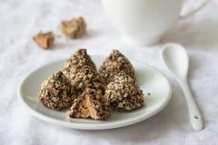 Домодельные помадки с арахисовым маслом, поливой шоколада и мякишами waffle Стоковые Изображения RF