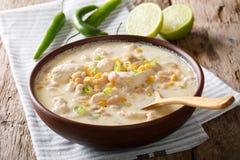 Домодельный белый цыпленок chili с концом-вверх фасолей, известки и мозоли Стоковые Изображения
