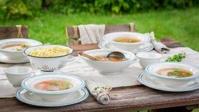 Домодельный и здоровый куриный суп служил на солнечный день Стоковое Изображение