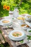 Домодельный и здоровый куриный суп с свежими овощами Стоковое Изображение