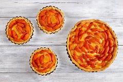 Домодельный пирог абрикоса в блюде выпечки Стоковые Фото