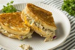 Домодельный провозглашанный тост сандвич Melt тунца Стоковые Фотографии RF
