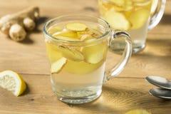 Домодельный свежий чай имбиря стоковая фотография rf
