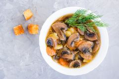 Домодельный суп гриба с champignons и крошками Стоковое Изображение