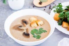 Домодельный суп сливк гриба с champignons в плите Стоковая Фотография RF