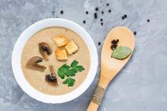 Домодельный суп сливк гриба с champignons и крошкой Стоковая Фотография