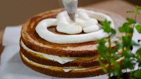 Домодельный cream торт с персиками видеоматериал