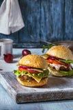 2 домодельных гамбургера Стоковые Фото