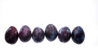 Доморощенная органическая куча голубых слив изолированных на белом backgroun Стоковые Фото