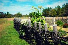 Домодельная загородка Стоковое Фото