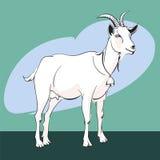 Домодельная коза с колоколом на шеи Иллюстрация вектора