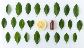 Домодельная концепция эфирного масла Эфирное масло бутылки с куском Стоковое Фото