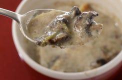 Домодельная сливк супа гриба стоковое фото