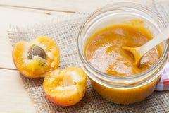 Домодельное варенье абрикоса и свежие абрикосы с листьями Стоковое Изображение RF