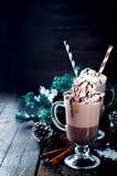 Домодельное горячее какао Стоковая Фотография RF