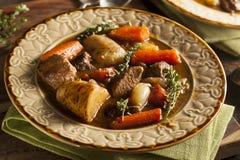 Домодельное ирландское тушёное мясо говядины стоковые изображения