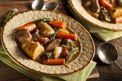 Домодельное ирландское тушёное мясо говядины Стоковые Изображения RF