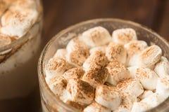 Домодельное какао с циннамоном и испеченными зефирами Стоковая Фотография
