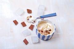 Домодельное мороженое ванили и шоколада с зефиром, подачей Стоковые Изображения RF