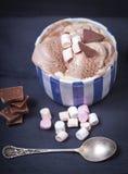 Домодельное мороженое ванили и шоколада с зефиром, подачей Стоковое Фото