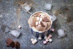 Домодельное мороженое ванили и шоколада с зефиром, подачей Стоковое Изображение RF