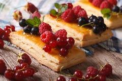 Домодельное печенье ягоды с макросом меда горизонтально Стоковое Изображение RF