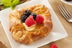 Домодельное печенье Danish лакомки Стоковое Фото