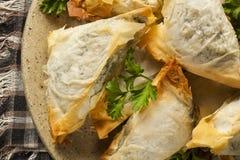 Домодельное печенье Spanakopita грека Стоковая Фотография