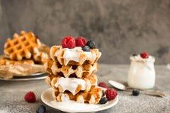 Домодельные бельгийские waffles с плодоовощами, голубиками, полениками и югуртом леса Стоковое Фото