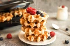 Домодельные бельгийские waffles с плодоовощами, голубиками, полениками и югуртом леса Стоковая Фотография RF