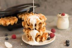 Домодельные бельгийские waffles с плодоовощами, голубиками, полениками и югуртом леса Стоковая Фотография